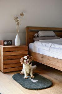 Dog 1 als Schlafzimmerteppich