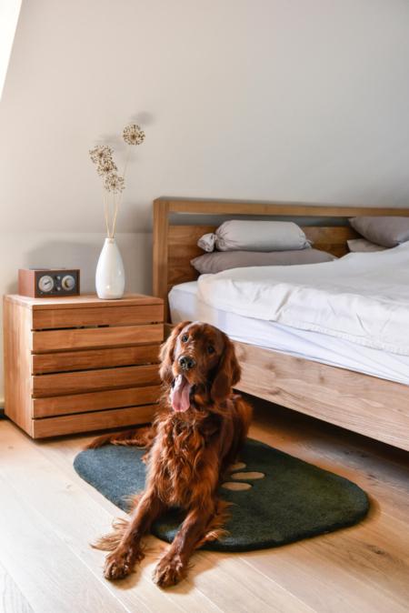 Dog 2 als Hundeteppich im Schlafzimmer